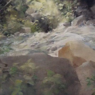 Vattenvirvlar